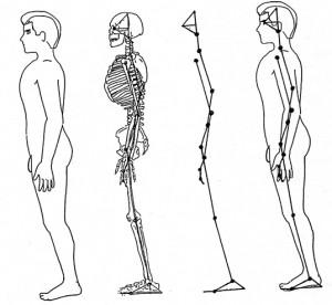 図2.7身体・骨格・骨格リンク