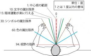 図5.6水平視野(欧米人)